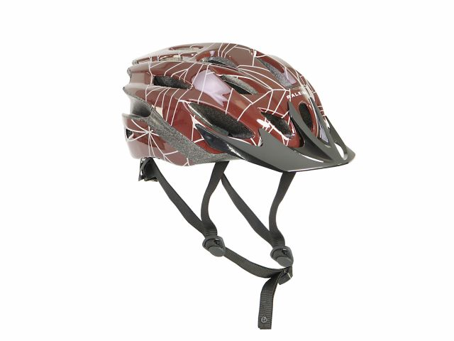 Raleigh Mission Evo Pioneer Reflective Helmet